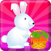 Pet Care Cute Bunny Animal