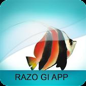 Razo GI App