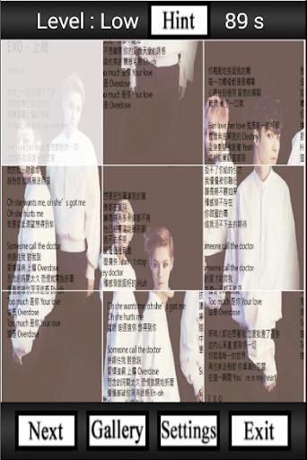Overdose Exo-K Puzzle