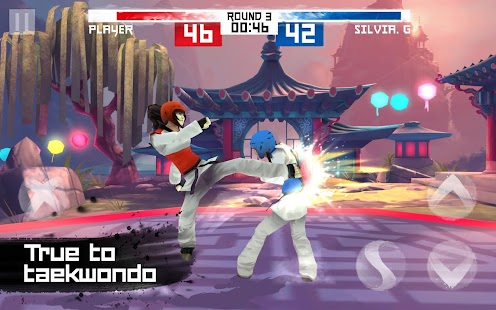 Taekwondo Game Screenshot 9