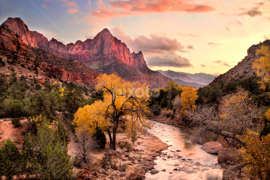 The Watchman by Roxie Crouch - Landscapes Mountains & Hills ( utah, watchman, red rock, national parks, zion, southern utah, aspen,  )