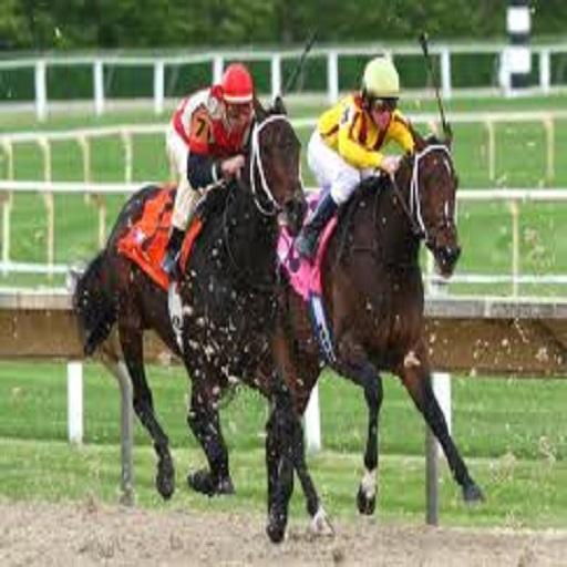 Horse Racing Guide