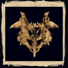 Rorschach Inkblots Test icon