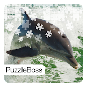 Dolphin Jigsaw Puzzles