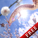 Sakura Dragon Sun Free icon