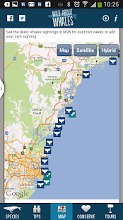 Whales NSW - screenshot thumbnail