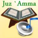 Audio Pack (Abdul Basit) logo