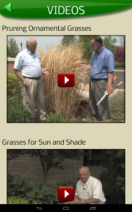 Midwest Ornamental Grasses- screenshot