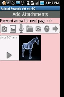Animal Records Vet ON GO-L - screenshot thumbnail