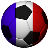 France Soccer Fan