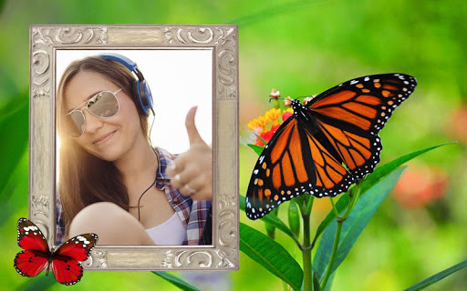 玩免費攝影APP|下載蝴蝶相框 app不用錢|硬是要APP