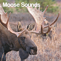Moose Sounds icon