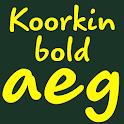 Koorkin Bold FlipFont icon