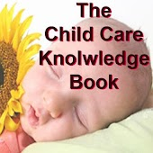 The Child Care Ebook