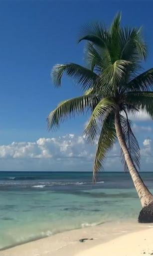 Real Sea Beach Waves LWP