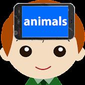 Heads Up Animals