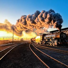 Steamy Susan by Rob Vandongen - Transportation Trains ( steam train locomotive rail yard tracks,  )