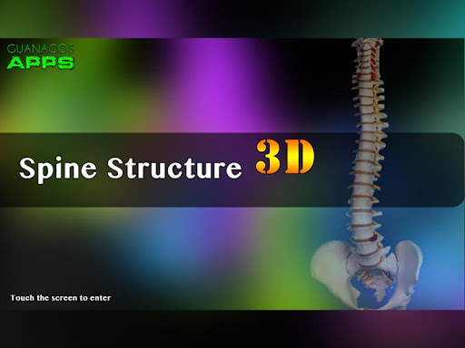 Spine Structure