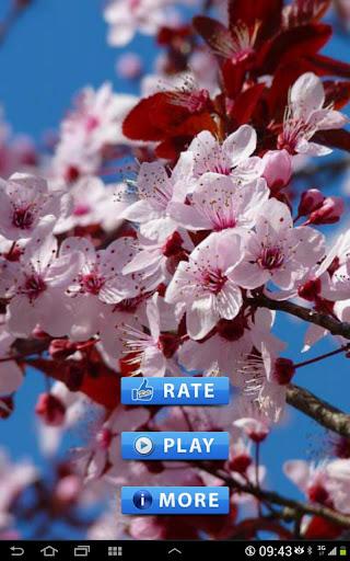 Permainan Bunga