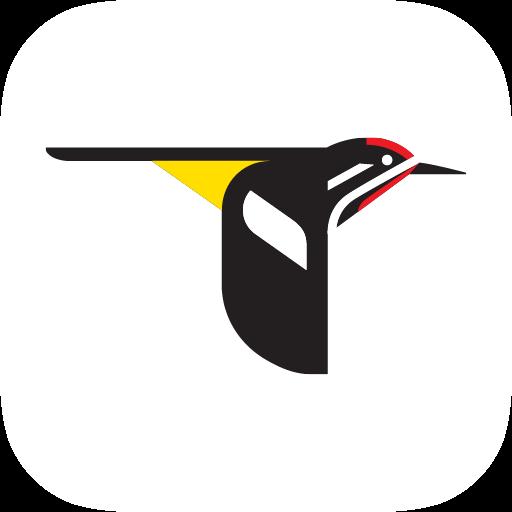 Audubon Bird Guide Apps On Google Play