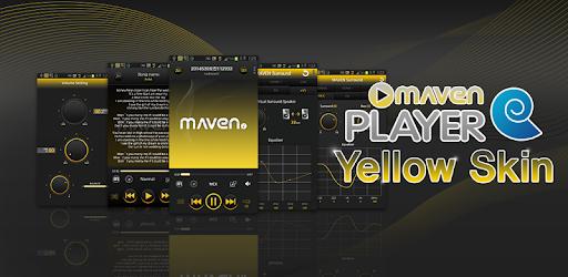 Playerpro music player 2 44 apk download   Download Player