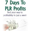 7 Days To PLR Profits logo