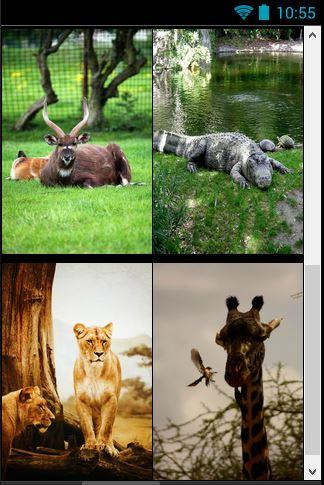 Tales of Zoo