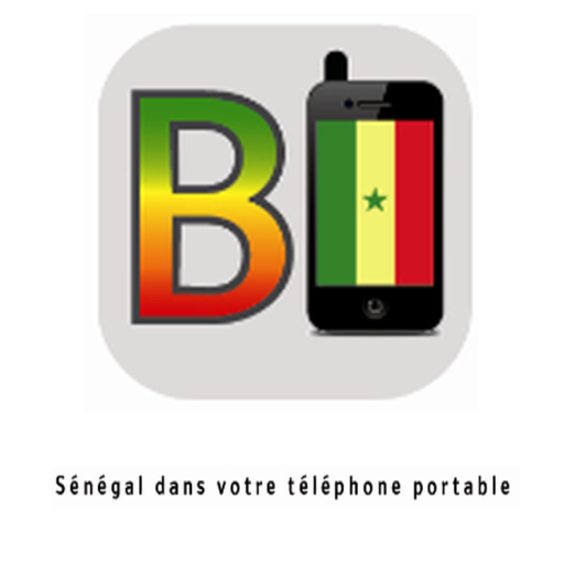 PortableBI Senegal on the GO - screenshot