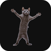 Dancing Cat Live Wallpaper