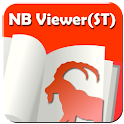 NBviewer(ST)