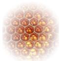 Beekeeper Hub icon