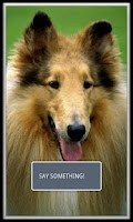 Screenshot of Puppy and Dog Translator