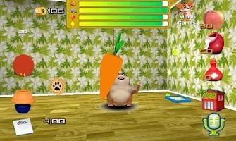 Screenshot of Pet talking friend hamster