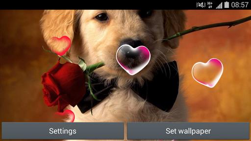【免費個人化App】可愛的動畫牆紙-APP點子