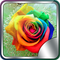 4D Rose Live Wallpaper icon