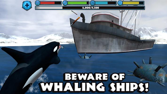 Orca Simulator - screenshot