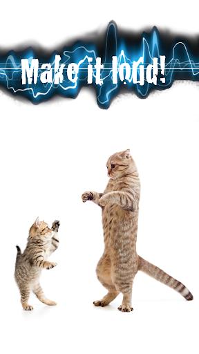 解謎必備APP下載|Kitty Sounds Games 好玩app不花錢|綠色工廠好玩App
