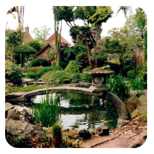 Japanese Garden Design LOGO-APP點子