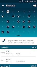 Fitbit Screenshot 2