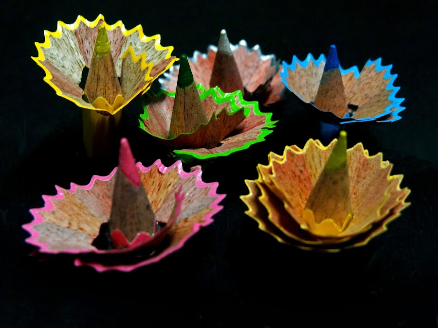 Colour bloom2 by Asif Bora - Artistic Objects Education Objects (  )