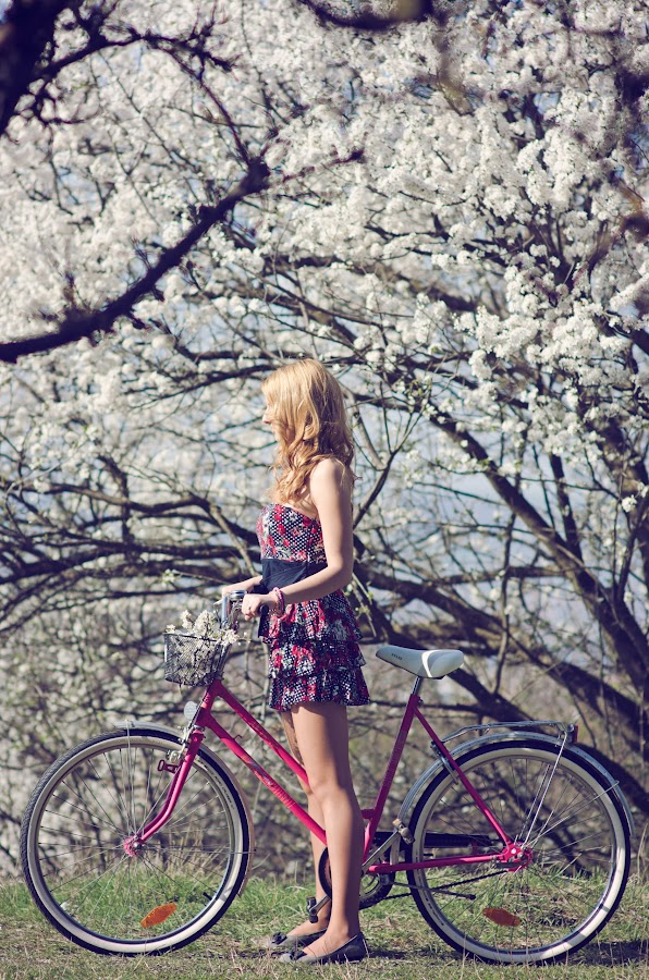 Blossom Spring by Sorina Bindea - People Portraits of Women ( girl, bike, woman, sunny, pink, bloom, spring, blossom, bicycle )