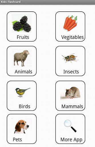 Flashcard:Vegetables Animal