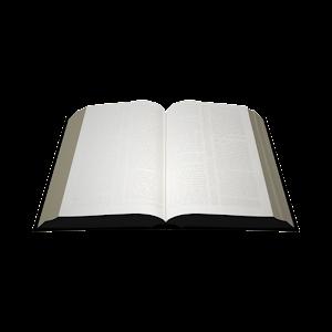 NWT Bible (1984) 書籍 App LOGO-APP試玩
