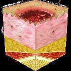 Pressure Ulcer Guide icon