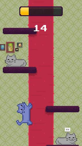 Climby Kitten