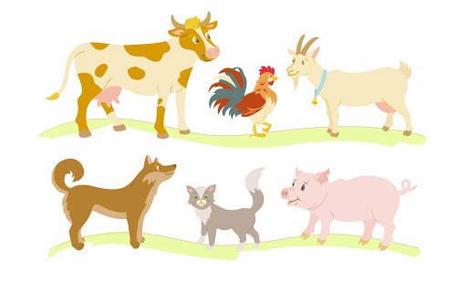Wild domestic animals - game