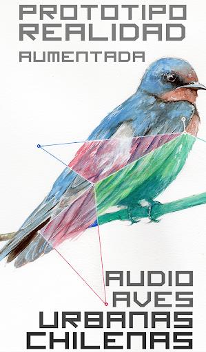 Prototipo Aves de Chile AR
