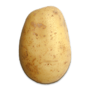 Potato Android Apps On Google Play