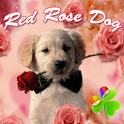 Red Rose Dog Theme GO Launcher icon