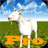 Goat Rush Simulator Pro
